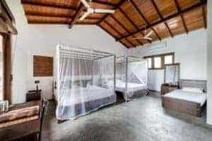 Lions Rest, Family surf hotel, Coconuts surf break, nr Weligama, Sri Lanka,