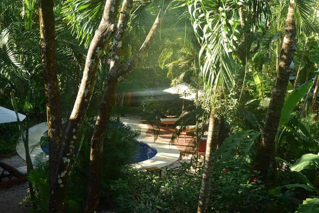 Sunset Shack, Swimming pool, Nosara, Playa Guiones, Costa Rica