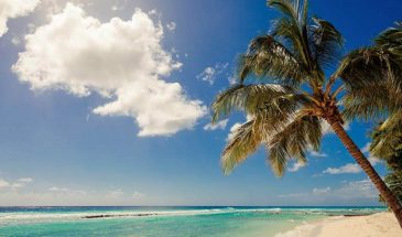 Sugar Bay, Christchurch, Barbados, Luxury family beach hotel, Family Surf Co