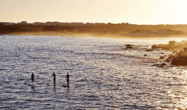 Standup Paddleboard, SUP, Martinhal Cascais, Lisbon, Family Surfing Holiday, Portugal, Family Surf Co